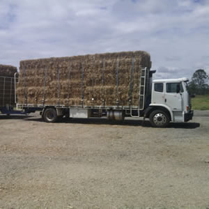 Cane mulch deliveries in Wide Bay